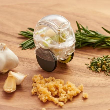 Garlic Zoom 2691