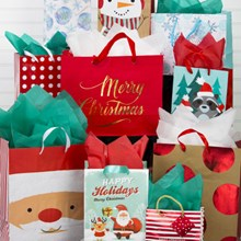 Festive Fun Gift Bags - Set of 10 1661