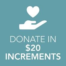 $20 Donation 9920