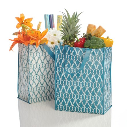 Grocery Store Bags—Set of 2 4304