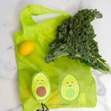 Foldable And Re-usable Shopping Bag 2101