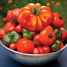 Heirloom Tomato 5 Varietal Collection 4116