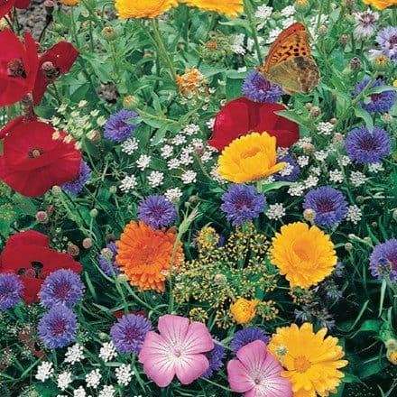 Butterfly Garden Seed Mat 4633