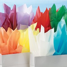 All Occasion Color Paper Assortment 1681