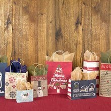 Holiday Kraft Gift Bags - Set of 10 1323B